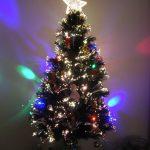 クリスマスのジレンマ:クリスマスツリーは本物の木とプラスチックとどちらがエコか?