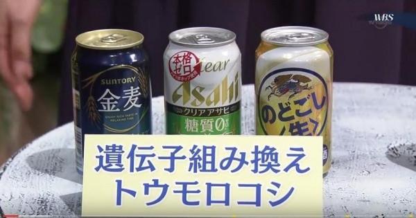 発泡酒に遺伝子組換え作物が使われて大騒ぎ!!