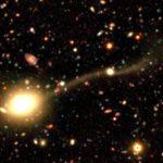 ネアンデルタール、子宮頸がんワクチン、飲み込まれる銀河