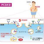 抗PCSK9抗体「アリロクマブ」、PIIIで主要評価達成