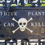 だから植物怖いんだって。殺傷力絶大、世界一危険な庭「ポイズン・ガーデン」へようこそ