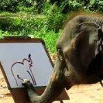 ゾウは鼻を使って上手に絵を描くことができる