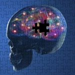 メルク社のベルベセスタット、ADによる軽度認知障害(MCI)でも治験失敗