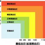 130~139/80~89mmHgの高血圧でも<120/80mmHgの正常血圧に比較すると10万人当たり年間51人多く、脳心血管疾患が発生していた(日本人に遺伝的に近い韓国での研究)