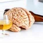 「お酒で脳が萎縮する」のではなく「背外側前頭前野と島皮質という脳の2つの部位の灰白質の量が少ないとお酒を飲む」可能性