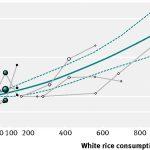 白米を多く食べるアジア人、糖尿病リスク55%増