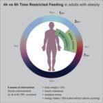 1日のうち食事可能な時間枠を制限する「Time-Restricted Feeding(時間制限摂食)」はダイエットに有効